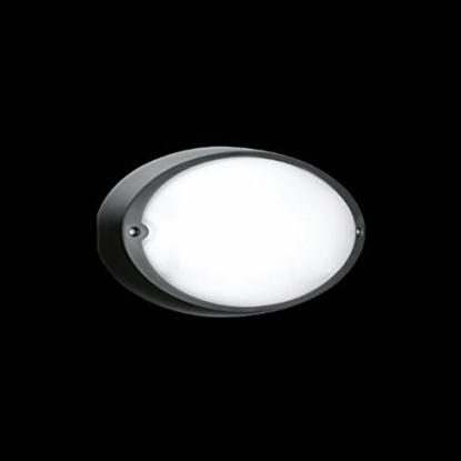 Picture of Applique Per Esterno Ovale Tutta Luce