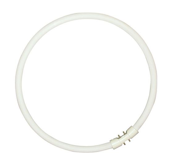 Picture of T5 Circline Plus  2gx13 40w/830 3000k Fluorescente Satinato Rivestito -0000523-